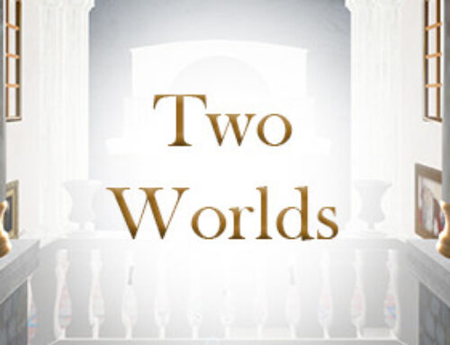 Two Worlds – The 3D Art Gallery